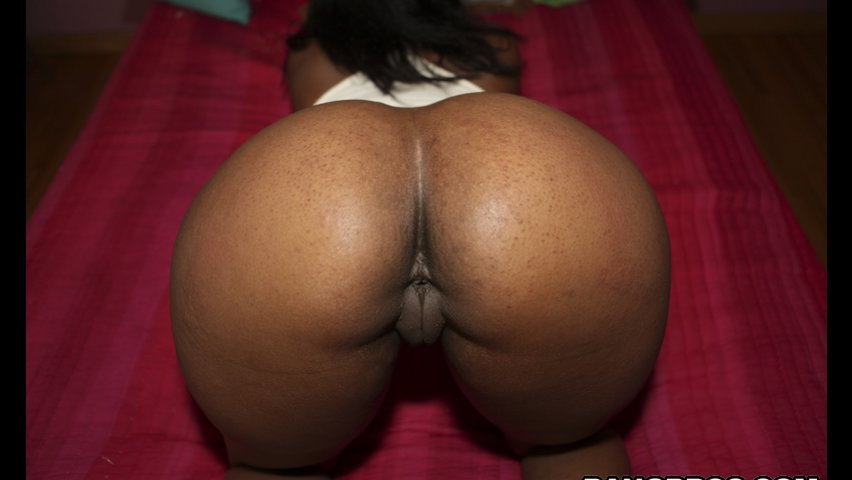 huge ebony ass videos Tits Hits - Big Boobs Tube.