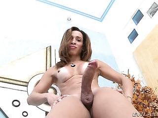 thick latina shemale strips