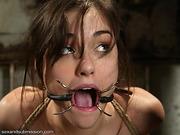 bondage, bound, submissive