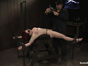 ass, bondage, pornstars, pussy