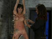 bondage, horse, pussy, torture
