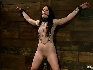 tied brunette whore needs