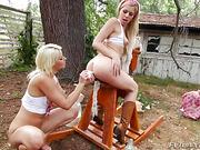 anal, ass, hd porn, toys