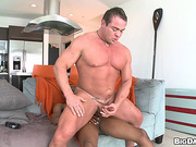 14 inch, gay, time, watching