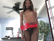 black, shemale, stripping, tranny