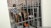 guarilla prisión guard gets