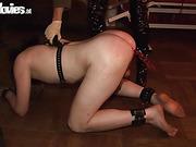 amateur, mistress