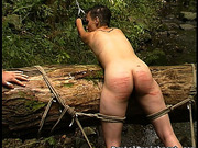 femdom, perfect, tied, whip