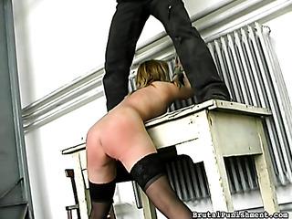 nasty bitch stockings with