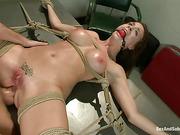 ass, bondage, tied up, toys