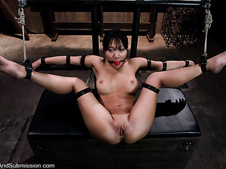 beautiful asian vixen gets