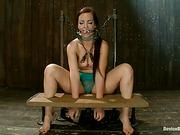 bondage, cage, punishment