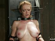 bondage, curvy, stranger