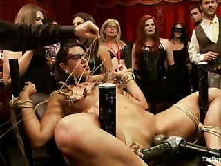 these freaky bondage slaves