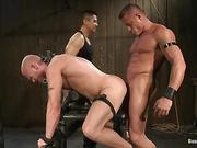ass, gay, machine, sucking