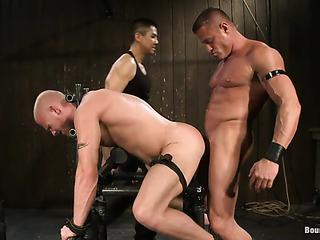 bald gay gets tortured