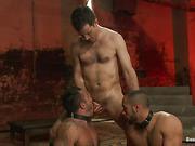 ass, gay, slave