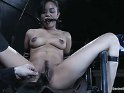 bondage, bound, pain, sucking