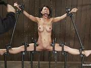 bondage, fight, torture