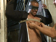 blindfolded, gay, screaming, stud