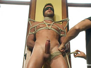 ass, gay, tied, vibrator