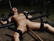 alluring, bondage, pussy, tits