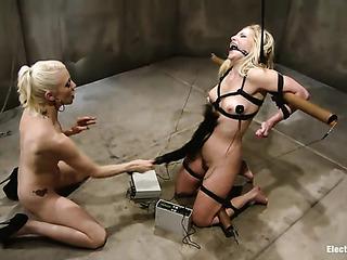 blonde vixen bound the