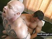 dick, gay, passionate, sucking