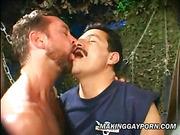 bdsm, gay, rough