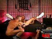 bedroom, dick, dude, gay