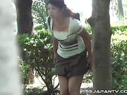 japanese, peeing, pissing, public