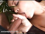 brunette, pussy, tongue