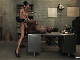 pervert ebony ladyboy office