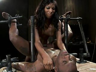 ebony transsexual mistress flogging