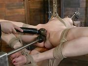 bitch, bondage, tall, woman