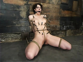 short haired bitch black