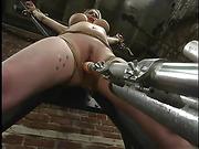 bondage, breasts, tied, tied up