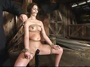bondage, cum, orgasm, virgin