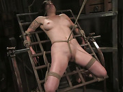 abused, bondage, torture, young
