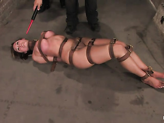 big boobed porn queen