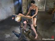 erotic, femdom, lesbian, strapon