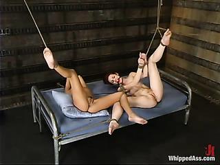 three wild sluts are