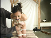brunette bitch gets tied