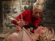 bondage, femdom, lesbian, strapon