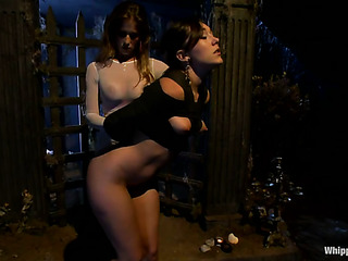 three brunettes fucking tied