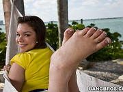 adorable, foot, swallow, white